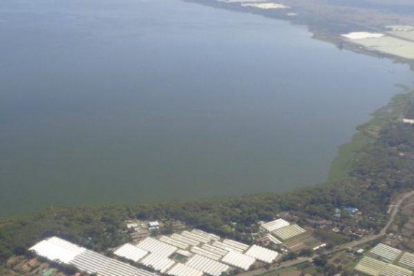 lake naivasha riparian association