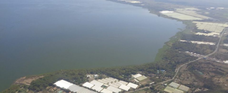 lake naivasha riparian association
